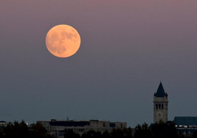 3 - La Luna brilla intensamente en Europa, Asia, África y América, en la víspera del espectáculo que se espera para este lunes 14 de noviembre. Foto: Twitter.
