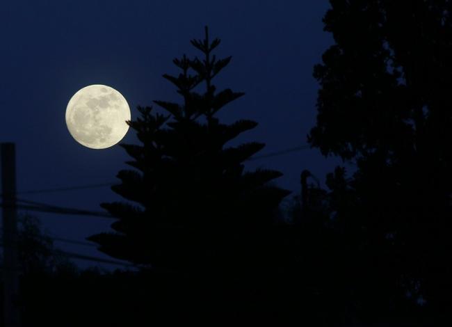 4 - La Luna brilla intensamente en Europa, Asia, África y América, en la víspera del espectáculo que se espera para este lunes 14 de noviembre. Foto: Twitter.