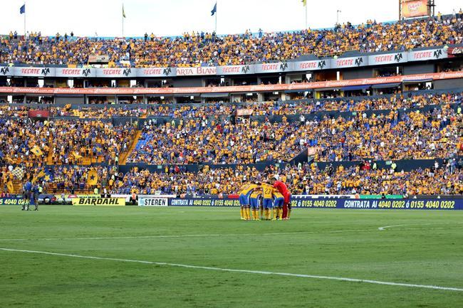 3 - Tigres empató 1-1 ante Veracruz en duelo de la fecha 7 del Apertura 2016. Foto: Info7